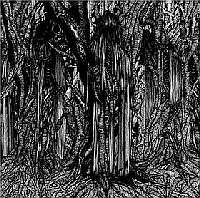 Sunn 0))) - Black One